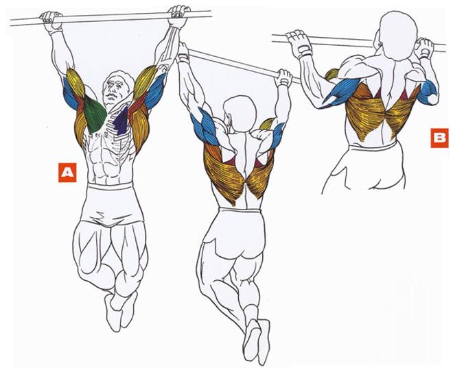 Занятия спортом варикоз эластичная повязка