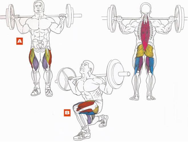 Накачать мышцы быстро. Упражнения для мышц ног. Выпады со штангой.